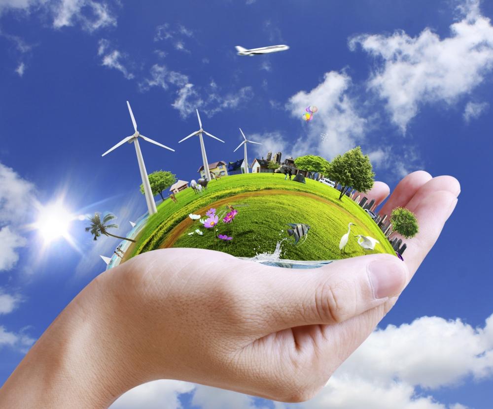 Istoria protecţiei mediului