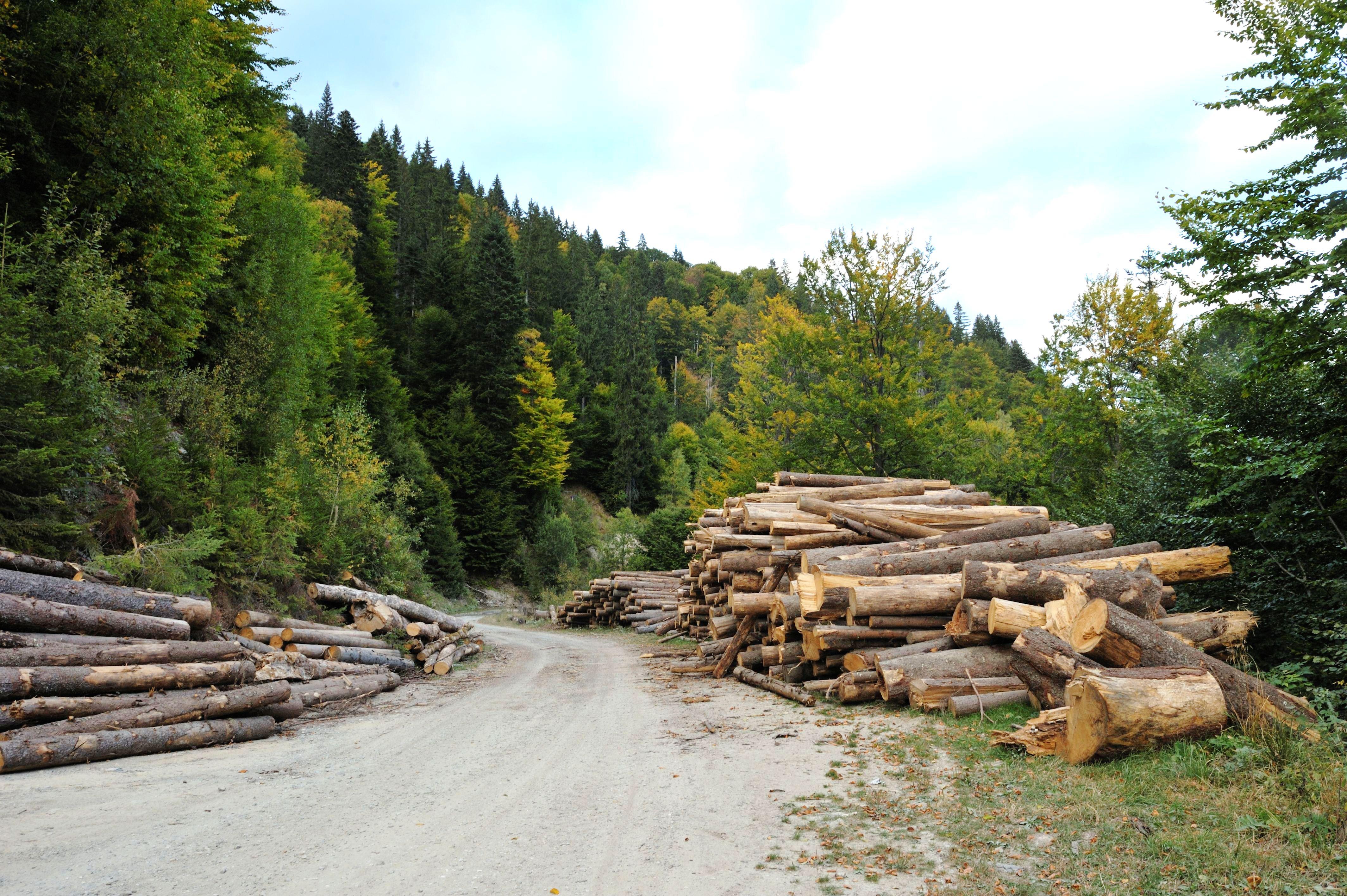 Interacţiunea dintre om şi mediul natural