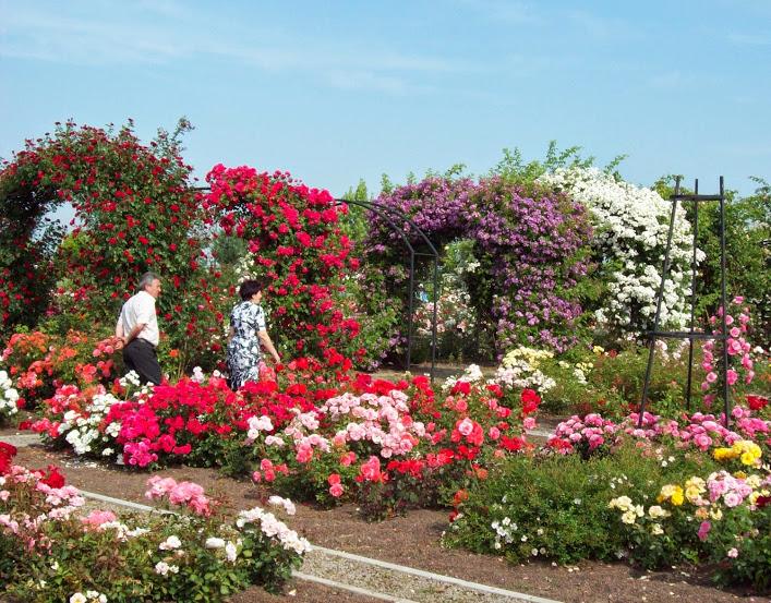 eutopia-gardens