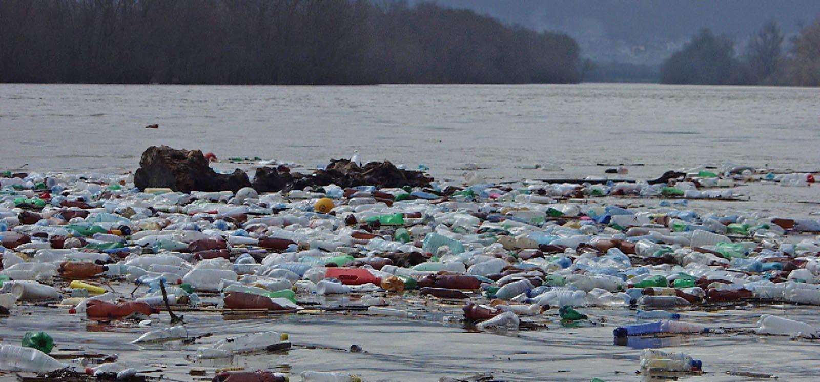 Descoperirea şi recunoaşterea formelor specifice de poluare a apei, solului şi aerului