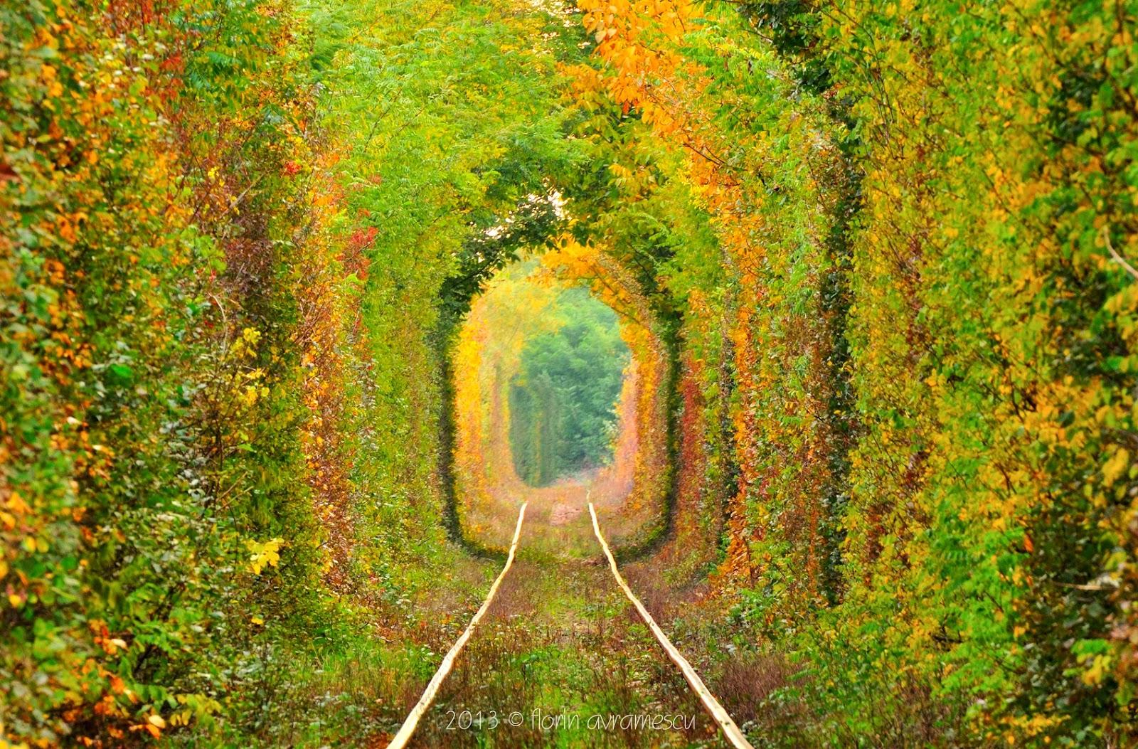 """Să ne cunoaștem țara: Caraș-Severin: """"Tunelul iubirii"""""""